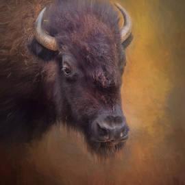 David and Carol Kelly - The American Bison II