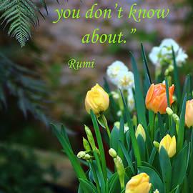Rumyana Whitcher - The Artist Inside You