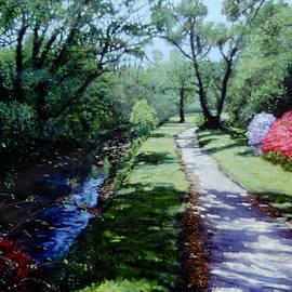 David Zimmerman - The Azalea Path