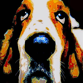 Marysue Ryan - The Basset  for Warhol