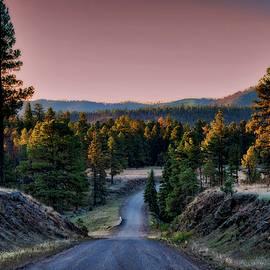 Saija Lehtonen - The Beauty of the Back Roads