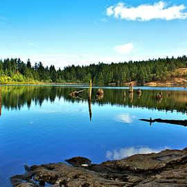 Elmar Langle - The Beauty of Westwood Lake
