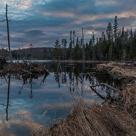 Steve Dunsford - The Beaver Pond Reflection