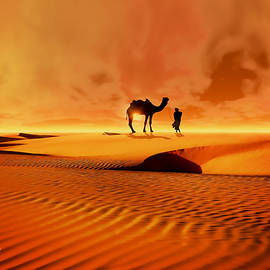 Valerie Anne Kelly - The Bedouin