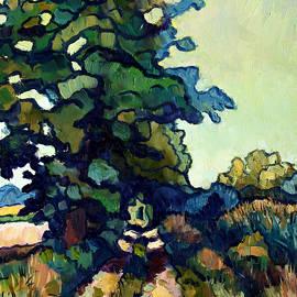 Stefan Boettcher - The Big Tree