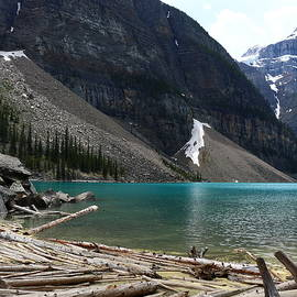 Christiane Schulze Art And Photography - The Blue-Green Moriane Lake And Driftwood Beach