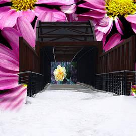 Debbie Nobile - The Bridge to Spring