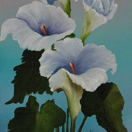 Louise Williams - The Calla Lilies are in bloom again