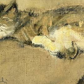 Giancarlo Vitali - The cat