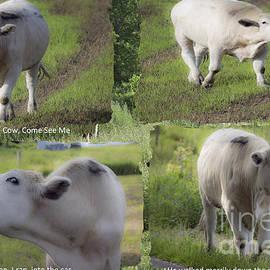 Linda Troski - The Cow Story