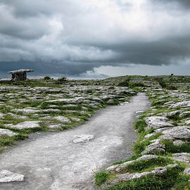 Menega Sabidussi - The Dolmen in the Burren