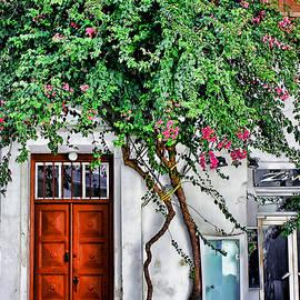 Tom Prendergast - The door- Mykonos