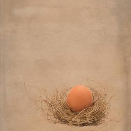 Gary LeBouton - The Egg