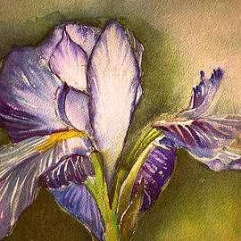 Mindy Newman - The Elegant Iris