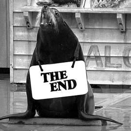 Miroslava Jurcik - The End