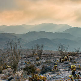 Joseph Smith - The Exaltation of Wilderness