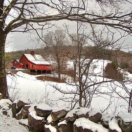Betsy Zimmerli - The Farm
