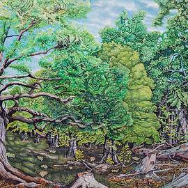 James Stanley - The Forest