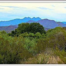 Barbara Zahno - The Four Peaks Panorama