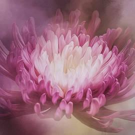 Jordan Blackstone - The Gift - Flower Art
