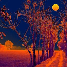 Bliss Of Art - The glowing path