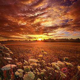 Phil Koch - The Goodness of the Lord