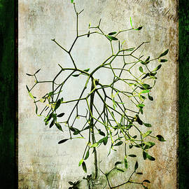Randi Grace Nilsberg - The Green Myth