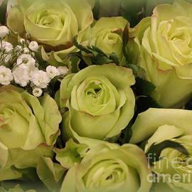 Dora Sofia Caputo Photographic Art and Design - The Green Roses of March