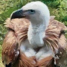Sergey Lukashin - The Griffon Vulture