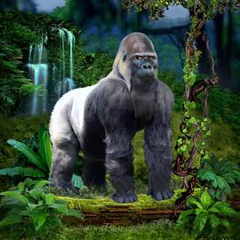 Glenn Holbrook - The Guardian of the Rain Forest