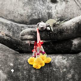 Adrian Evans - The Hand of Buddha