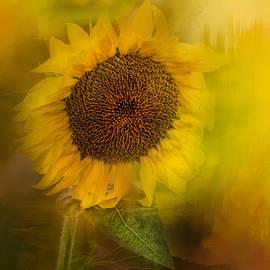 Jai Johnson - The Happiest Flower