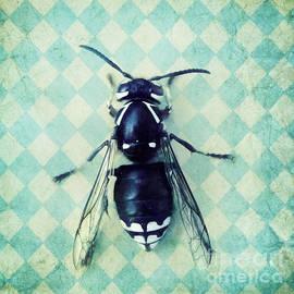 Priska Wettstein - The hornet