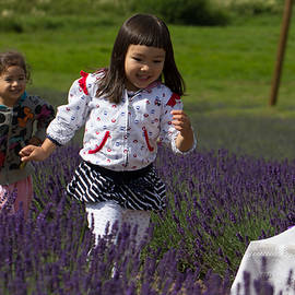 Peteris Vaivars - The lavender game