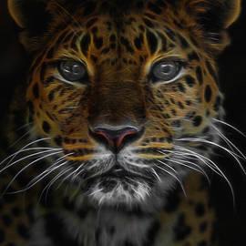 Ernie Echols - The Leopard Digital Art