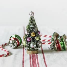 Kim Hojnacki - The Little Christmas Tree