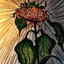 Jose A Gonzalez Jr - The Lone Sunflower 4