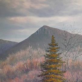 Sean Conlon - The Lonesome Pine