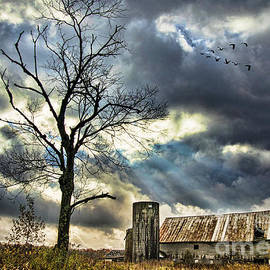Alana Ranney - The Long Journey South