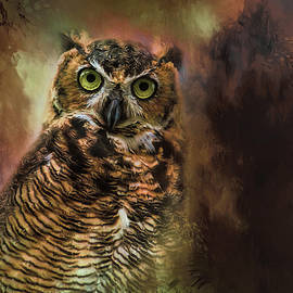 Jai Johnson - The Look in Her Eyes Owl Art