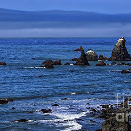 Mitch Shindelbower - The Lost Coast