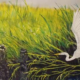 Yvonne Breen - The Marsh