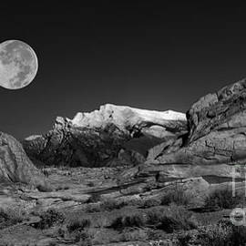 Mike Nellums - The Mesa and the Moon