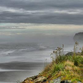 Larry Lingard-Davis - The Mists of Greymouth
