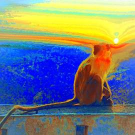 Sue Jacobi - The Monkey Who Stole My Sunset Primary Colors Abstract 1a