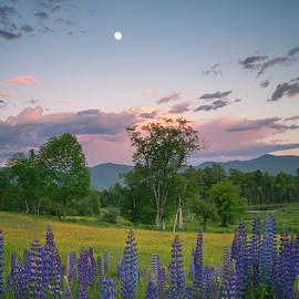 The Moon Rises Above - Darylann Leonard Photography