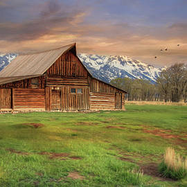 Lori Deiter - The Moulton Ranch