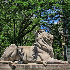 Allen Beatty - The New York Public Library Lions
