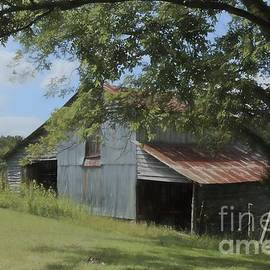 Benanne Stiens - The Oak Branch Barn