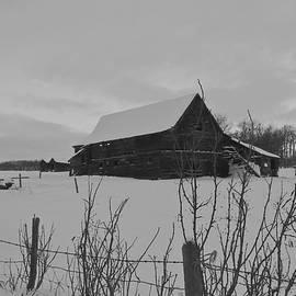 Sandra Foster - The Old Barn